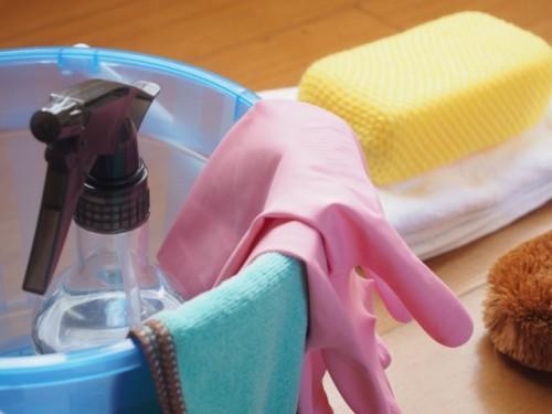 大掃除 網戸 洗い方 見出し2
