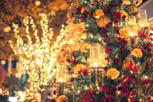 クリスマス イルミネーション 自宅 初心者 中見出し2